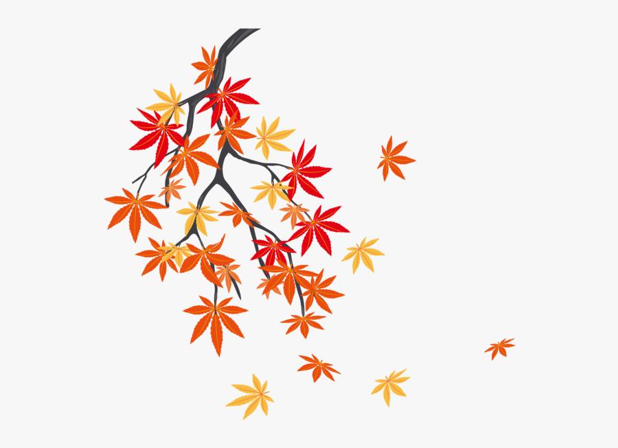 #autumn #summer #winter #leaf #leafs #leaves #fall - 枫叶 树, Transparent Clipart