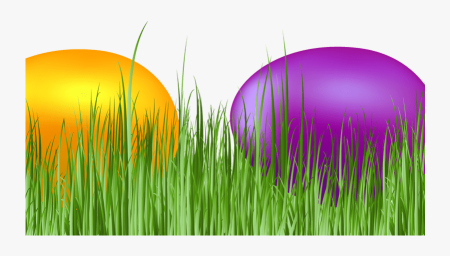 Easter Grass Eggs Png Download Image - Grass, Transparent Clipart