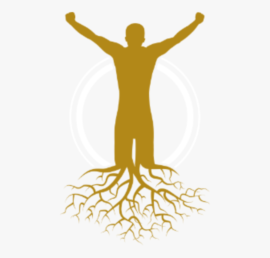 Image - Tree With Roots, Transparent Clipart