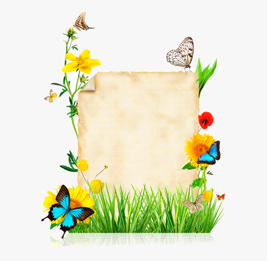 Butterfly Page Border Design, Transparent Clipart