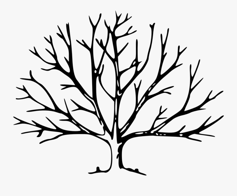 Transparent Leaving The House Clipart - Leave Less Tree Drawing, Transparent Clipart