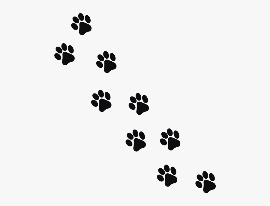 Transparent Cat Paw Png - Paw Prints Transparent Background, Transparent Clipart