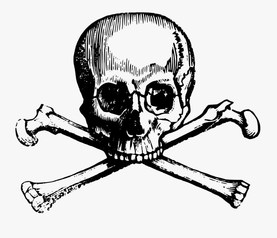 Transparent Pirate Flag Png - Skull And Cross Bones Clipart, Transparent Clipart