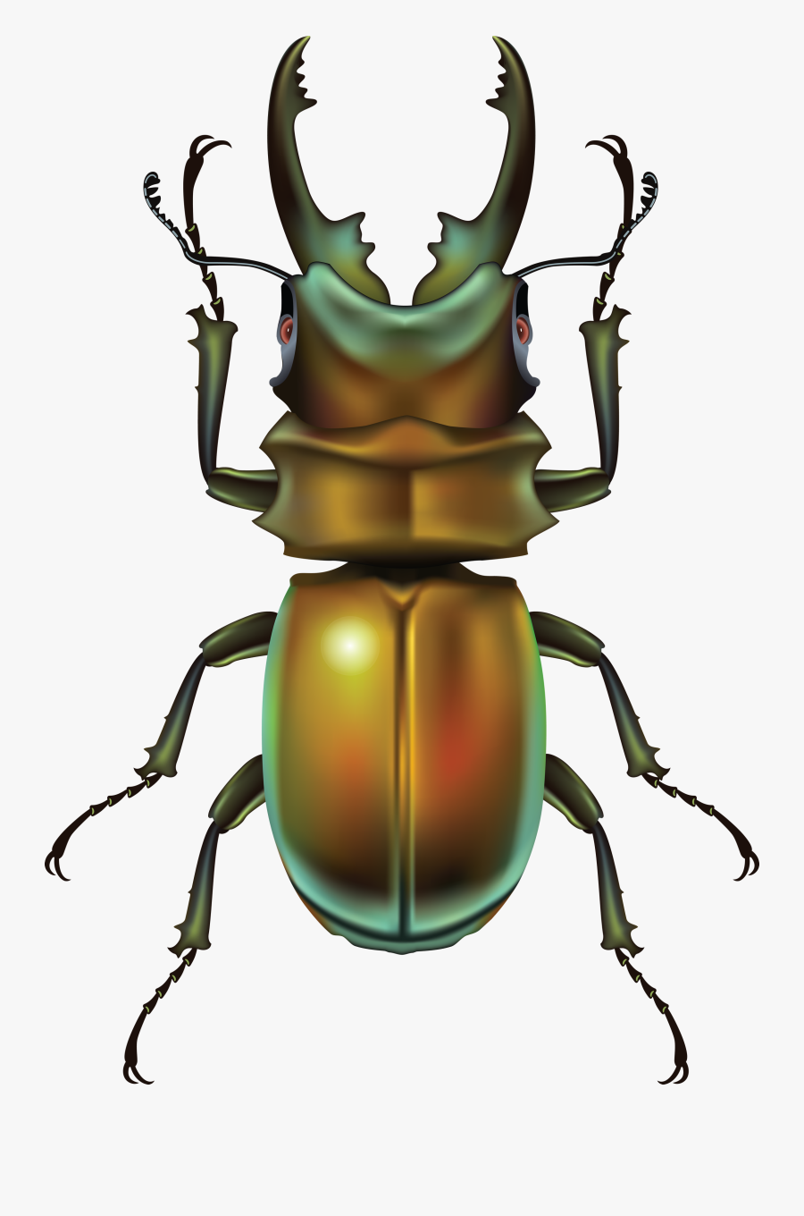 Bug Clipart Clipartfest - Жук Пнг, Transparent Clipart
