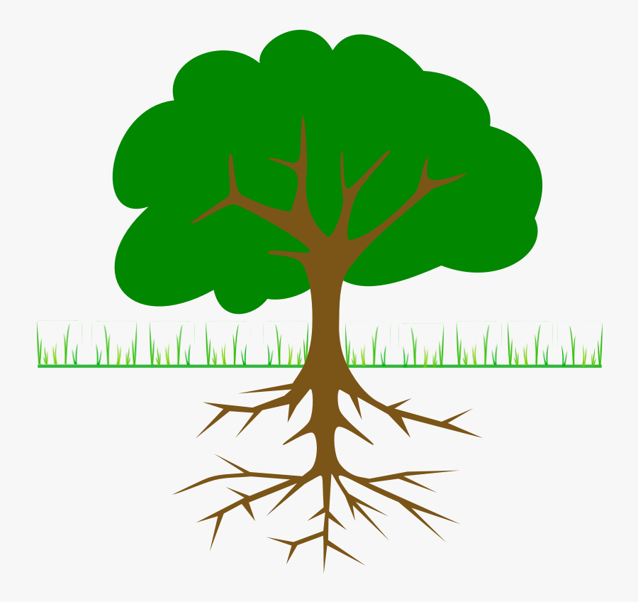 Family - Tree - With - Roots - Clipart - Tree Clipart With Roots, Transparent Clipart
