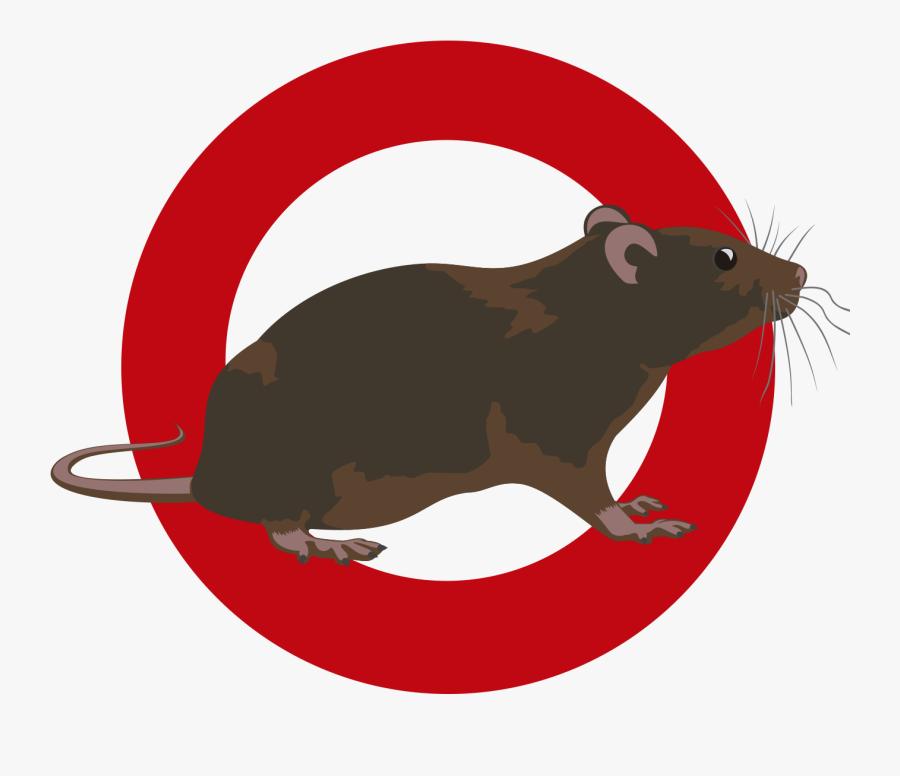 Clipart Rat Pest Control - Pest, Transparent Clipart