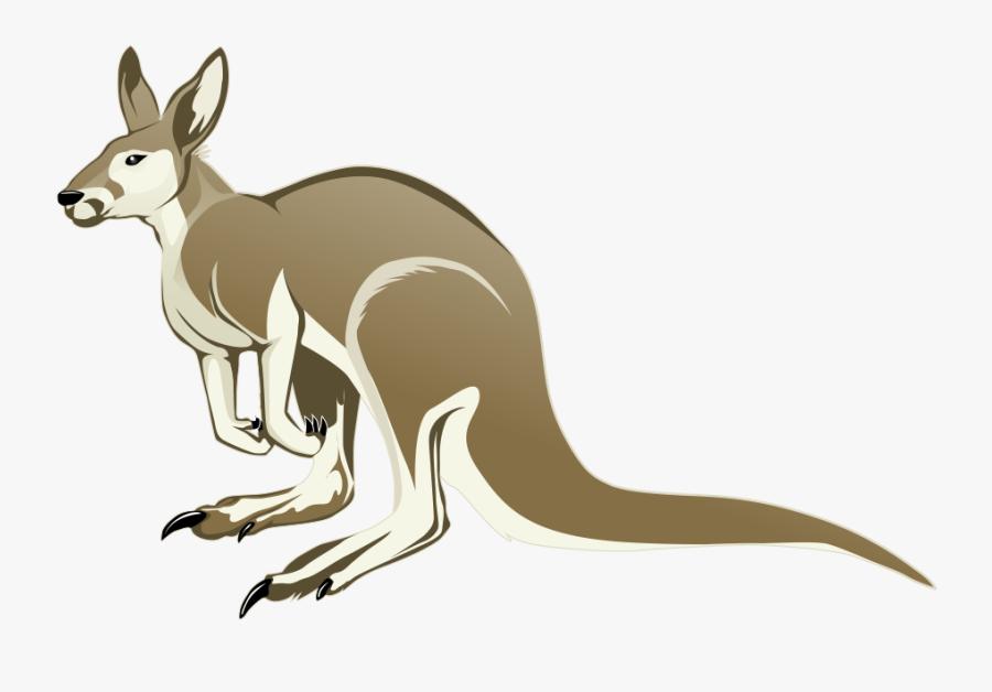 Download Kangaroo Png Transparent Images Transparent - Cartoon Kangaroo No Background, Transparent Clipart