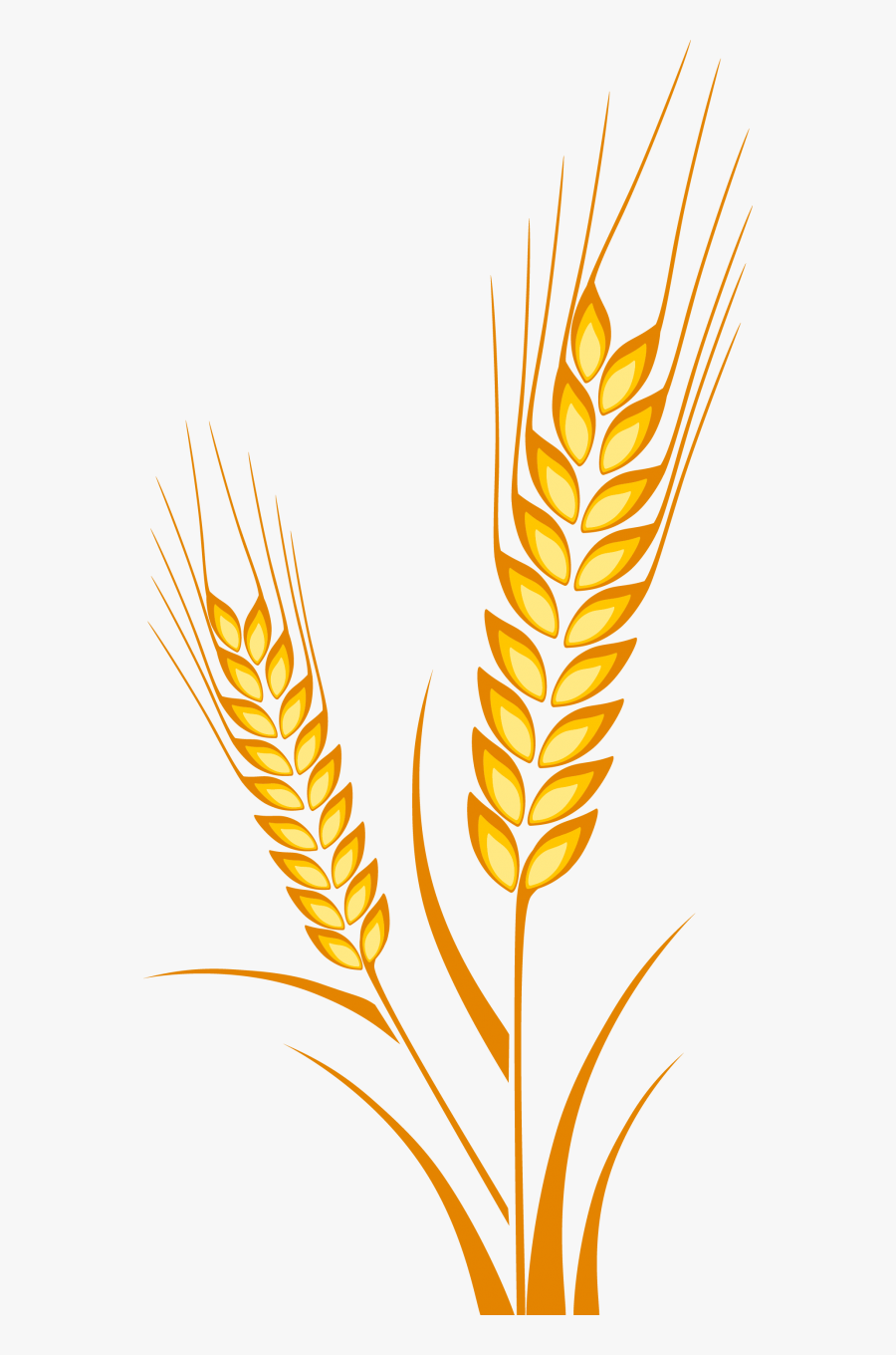 Clip Art Transparent Library Barley Drawing Cereal - Wheat Plant Drawing, Transparent Clipart