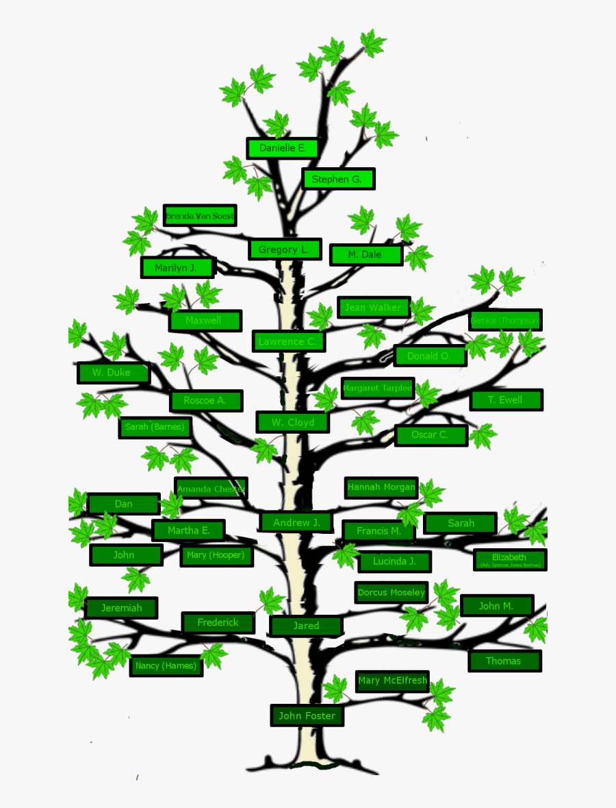 Clip Art Free Stock Name Clipart Family Tree - Family Tree Of The Fosters, Transparent Clipart