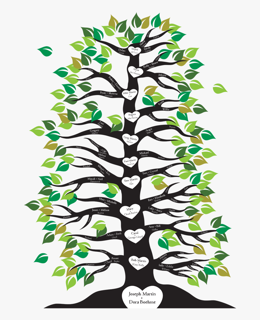 Image Result For Family Tree With Roots And Branches - Family Tree With Branches, Transparent Clipart