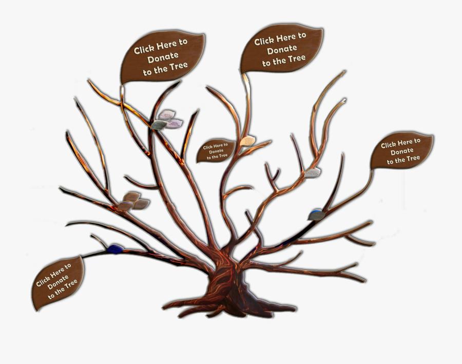 Transparent Family Tree Clip Art - John Muir Family Tree, Transparent Clipart