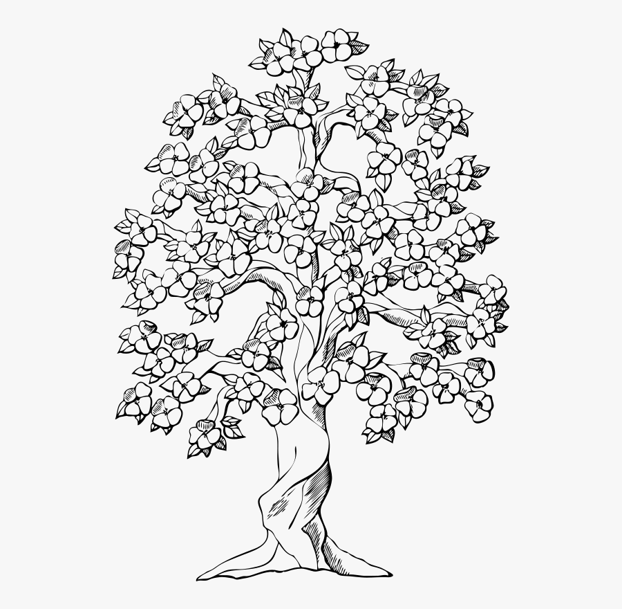 Art,symmetry,monochrome - Drawings Of Trees With Flowers, Transparent Clipart