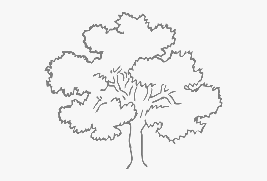 Family Tree Outline Template - Oak Tree Silhouette Green, Transparent Clipart