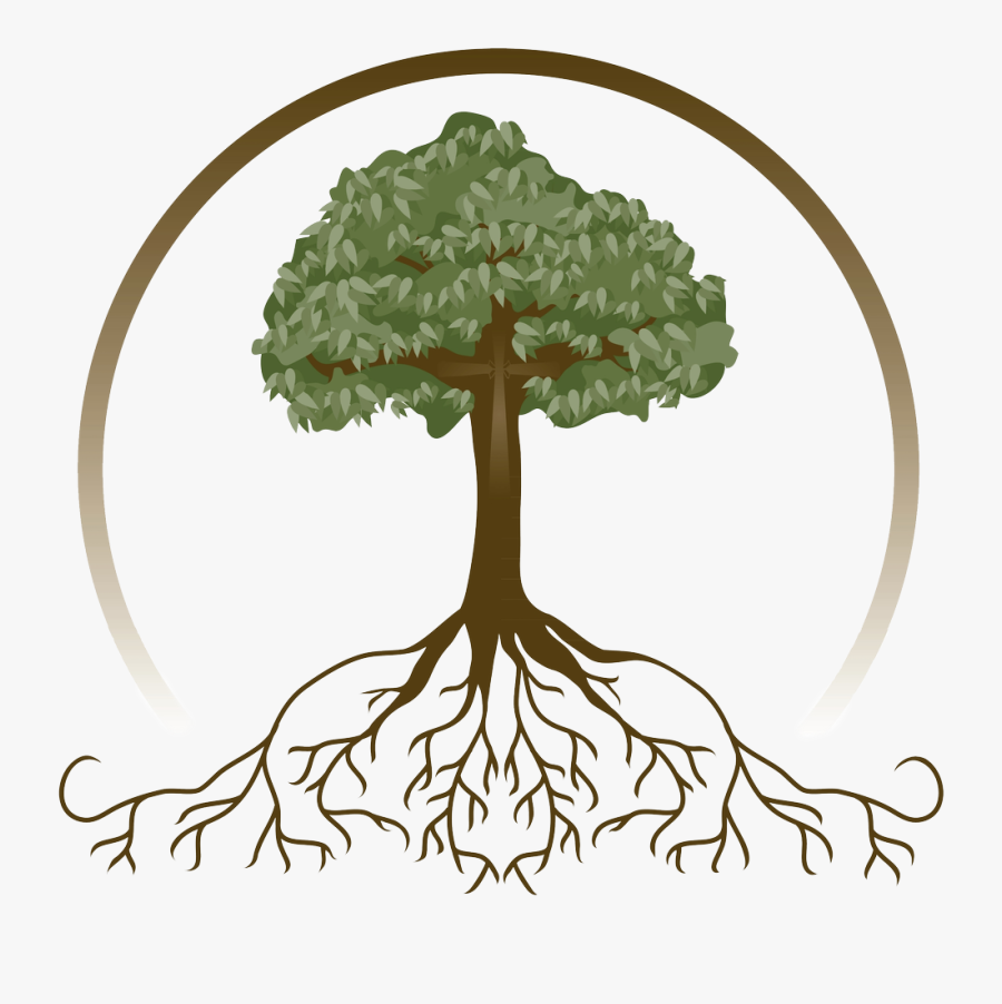 Family Tree With Roots Clipart, Hd Png Download , Png - Free Tree With Roots Clipart, Transparent Clipart