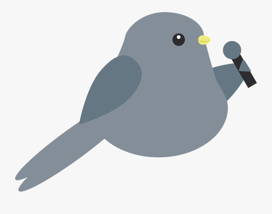 Bird Singing Transparent Background, Transparent Clipart