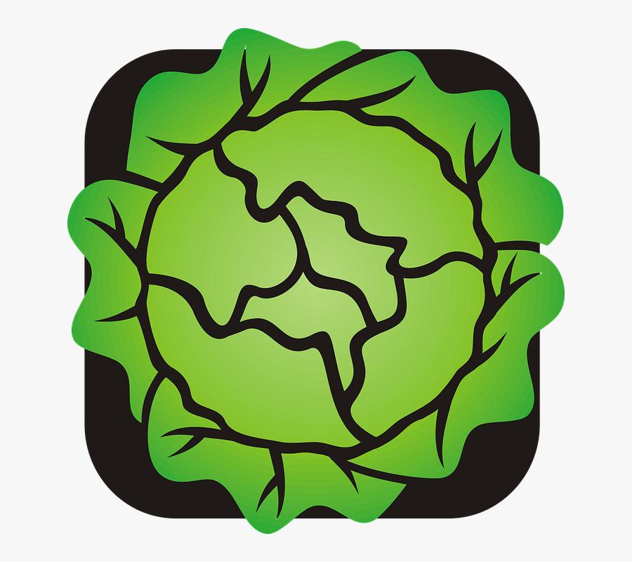 Lettuce Clip Art, Transparent Clipart