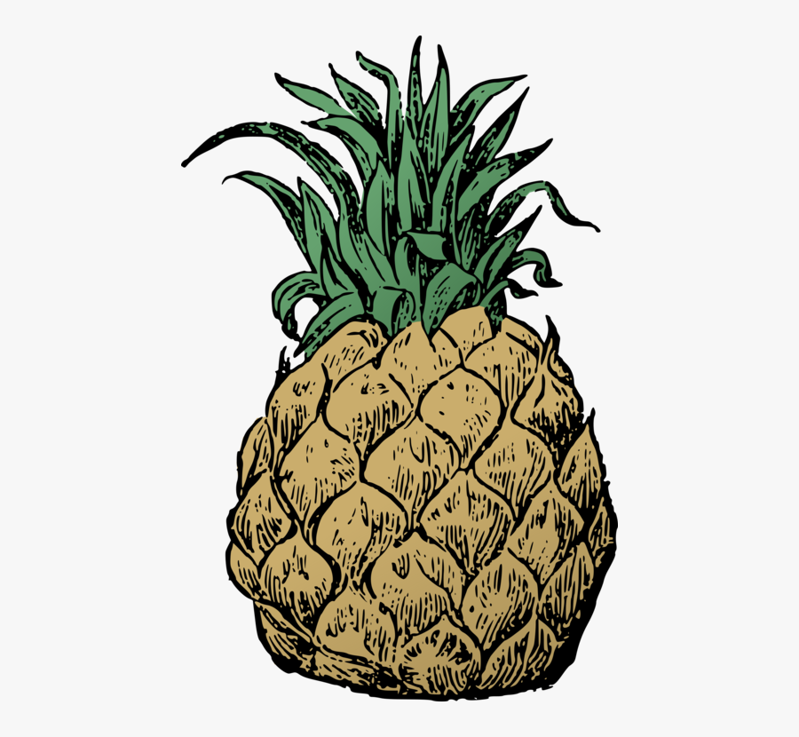 Plant,food,ananas - Pineapple, Transparent Clipart