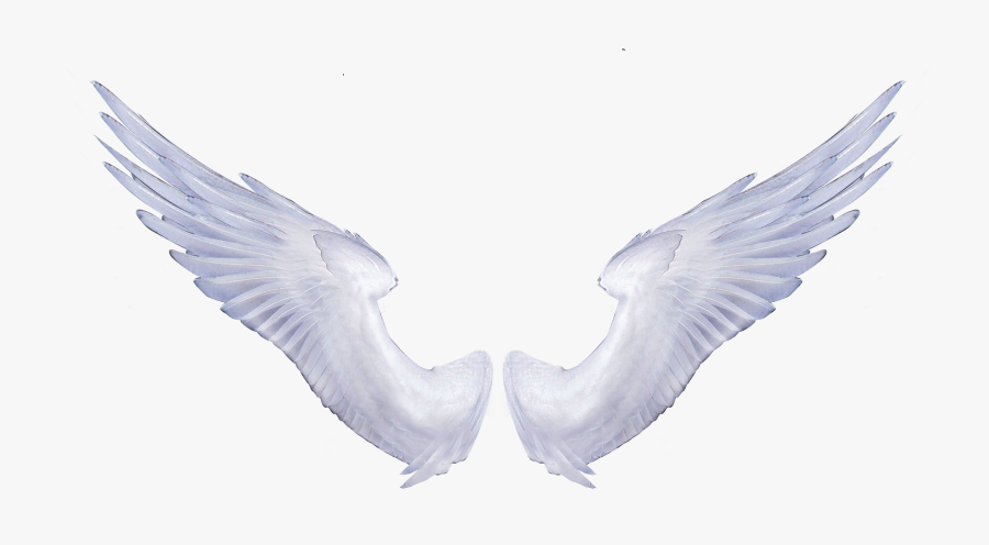 Angel Wings Portable Network Graphics Clip Art Image - Transparent Background Angel Wings Png, Transparent Clipart
