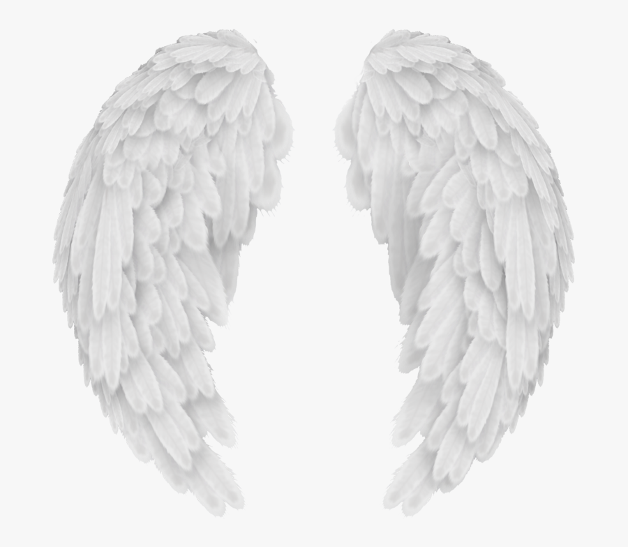 Angel Wings Png - White Angel Wings Png, Transparent Clipart