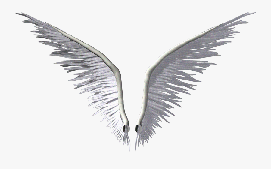 Wing Angel Clip Art - Transparent Background 3d Angel Wings, Transparent Clipart