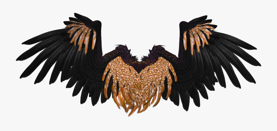 Clip Art Angel Wing Graphics - Black And Gold Angel Wings, Transparent Clipart
