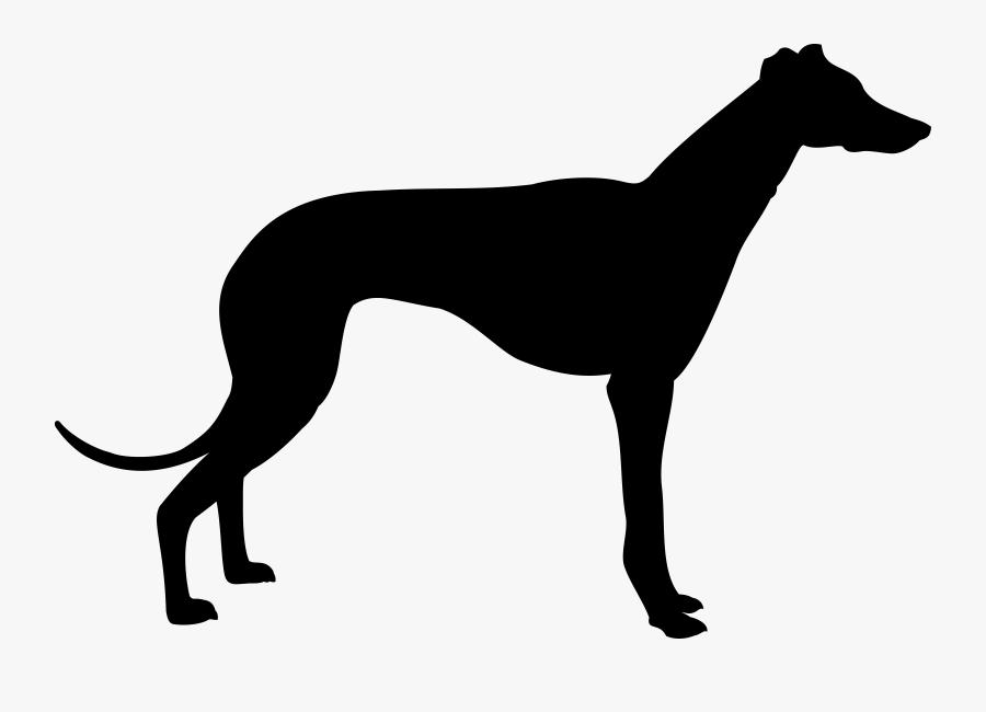 Greyhound Silhouette Clip Art - Greyhound Silhouette, Transparent Clipart