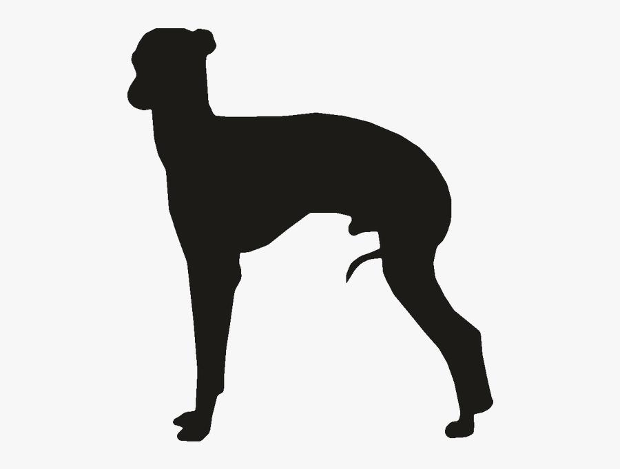 Whippet Italian Greyhound Ibizan Hound Clip Art - Italian Greyhound Silhouette, Transparent Clipart