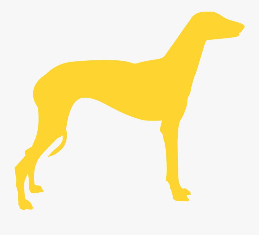 Rampur Greyhound, Transparent Clipart