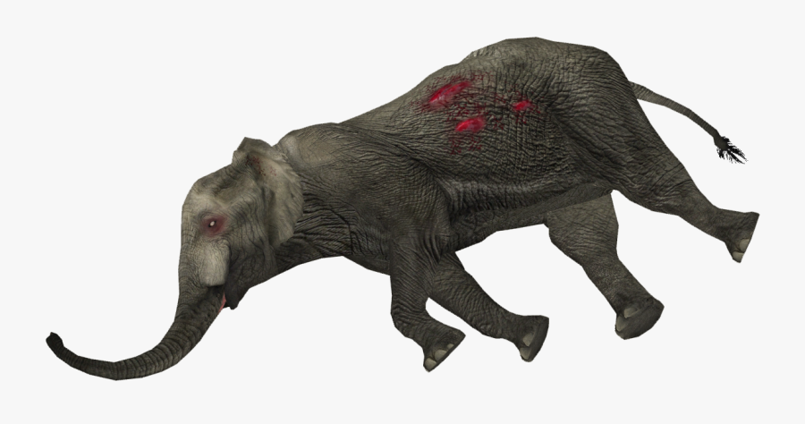 Dead Animal Png Transparent Png Dead Elephant Png Free Transparent Clipart Clipartkey The free images are pixel perfect to fit your design and available in both png. dead animal png transparent png dead