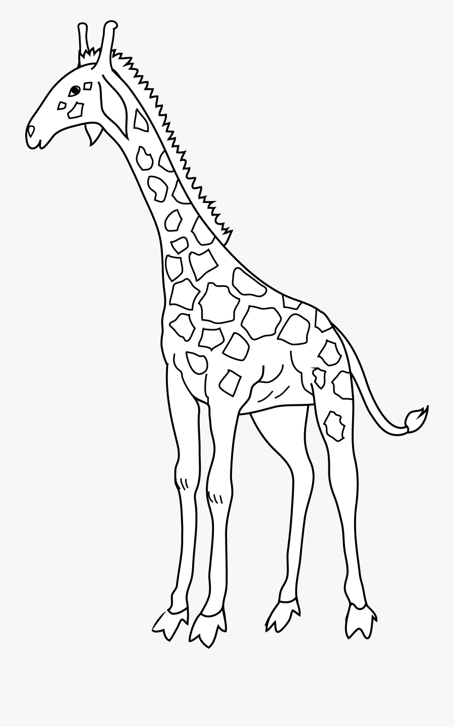 Coloring Page Free Clip - Giraffe, Transparent Clipart