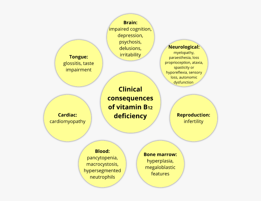Deficiency Of Vitamin B12 Consequence, Transparent Clipart