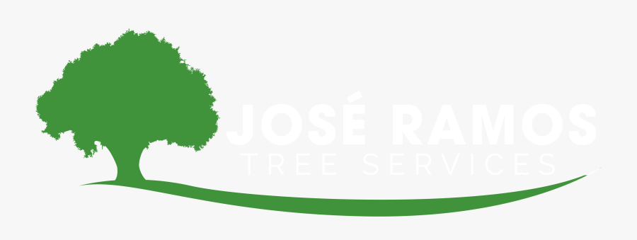 Transparent Clean Up Clipart - Tree Removal Tree Service Logo, Transparent Clipart