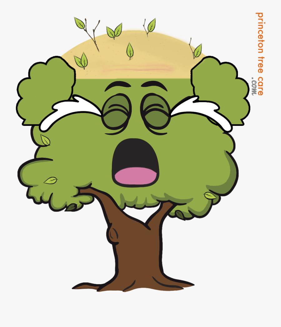 Lumberjack Clipart Tree Removal - Cartoon Tree With Face, Transparent Clipart