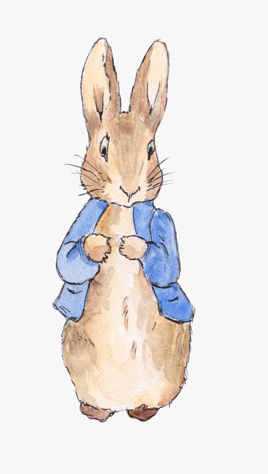 Transparent Peter Rabbit Clipart - Even The Smallest One Can Change The World Peter Rabbit, Transparent Clipart