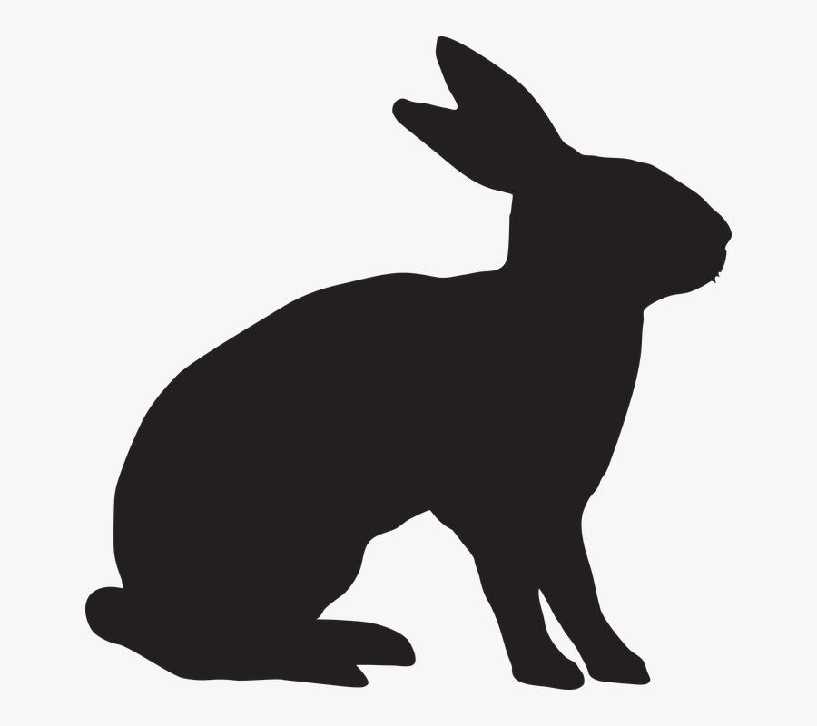 Food Allergy The Tale Of Peter Rabbit - Rabbit Ears Png ... (900 x 800 Pixel)