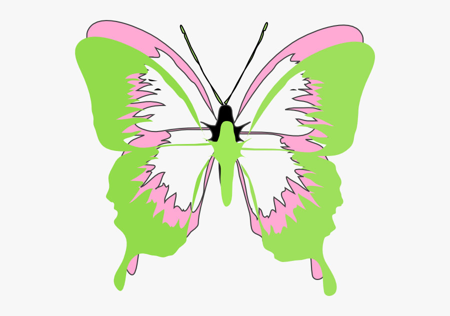 Butterfly Cartoon Black And White, Transparent Clipart