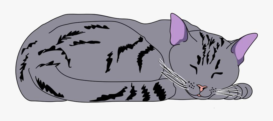 Animal, Cat, Center, Cute, Kitty, Mao, Pet, Pose - Sleeping Cat Clip Art, Transparent Clipart