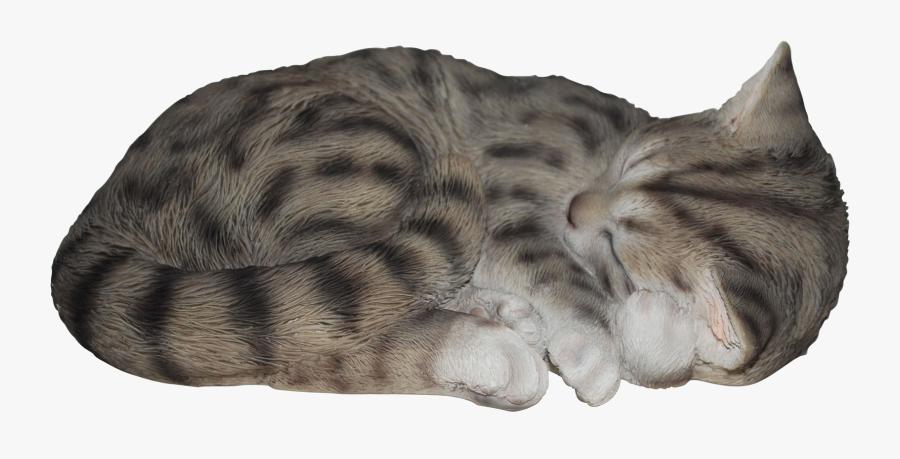 Transparent Sleeping Cat Png - Sleeping Gray Cat Png, Transparent Clipart