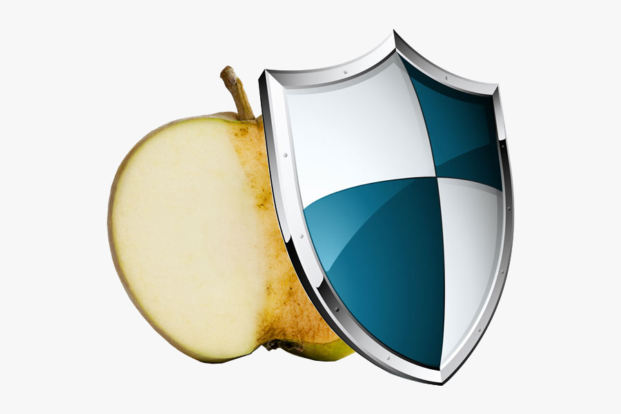 Antioxidants Act Like Bodyguards Who Dive In Front - Medieval Shield, Transparent Clipart