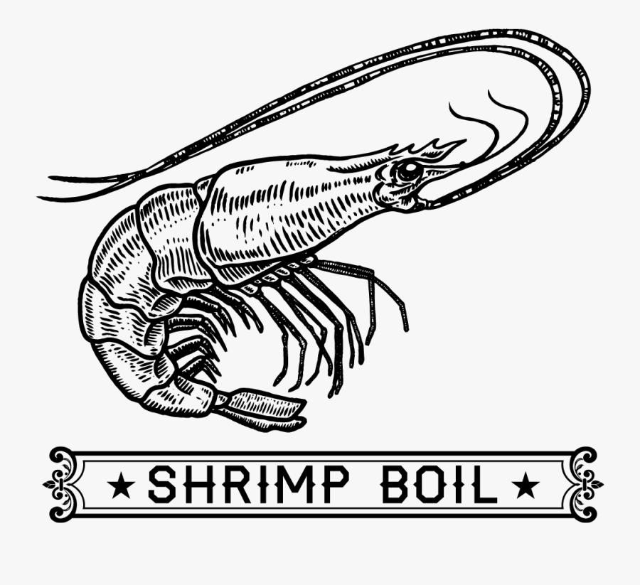 Shrimp Boil Art, Transparent Clipart