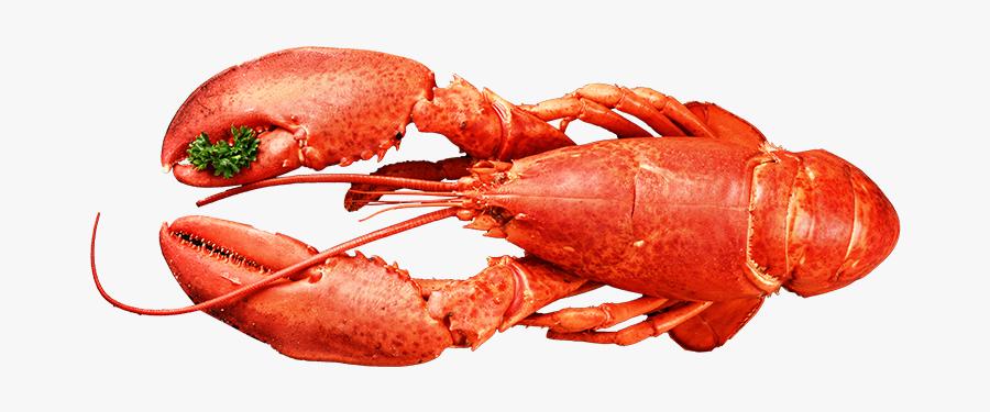 American Food,crab,botan Shrimp,shanghai Food,cuisine,spiny - American Lobster, Transparent Clipart