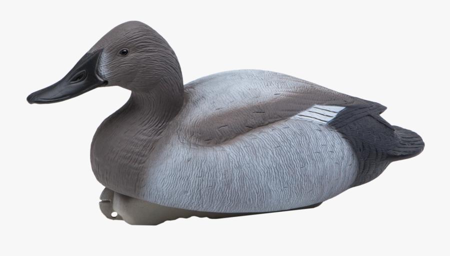 Mallard Goose Decoy Canvasback Duck - Greater Scaup, Transparent Clipart