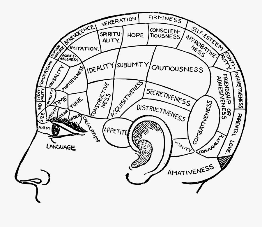 Transparent Critical Thinking Clipart - My Brain, Transparent Clipart