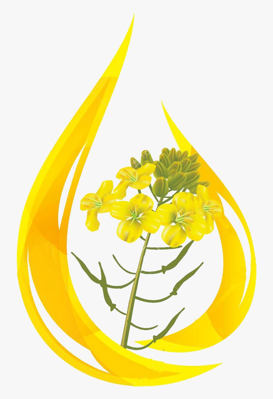 Oil Clipart Mustard Oil - Mustard Oil Drop , Free ...