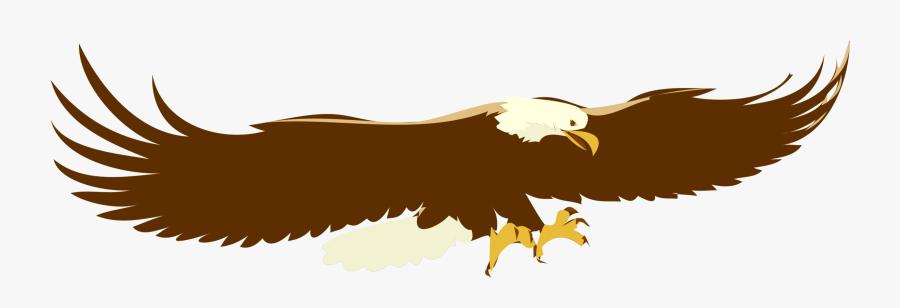 Eagle,wildlife,bald Eagle - Flying Eagle Clip Art, Transparent Clipart