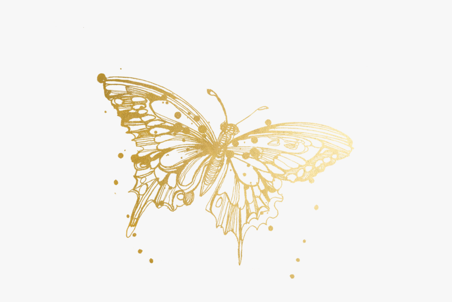 Butterfly Tattoos Temporary Accept Watercolor Tattly - Monarch Butterfly Tattoo Drawing, Transparent Clipart