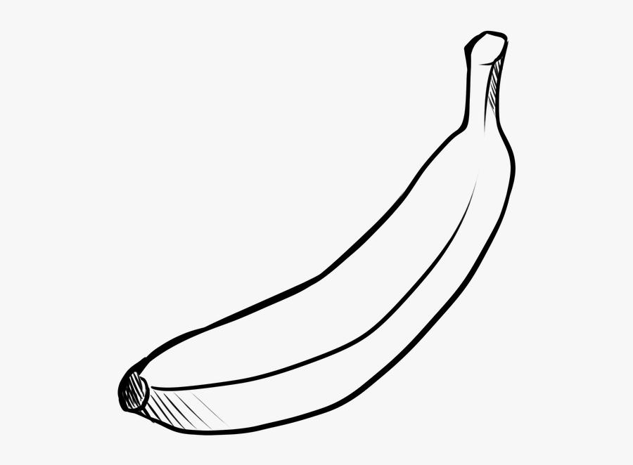 Fruit, Banana, Food, Yellow, Tropical Fruit - Gambar Sketsa Buah Pisang, Transparent Clipart