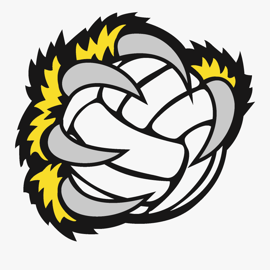 Volleyball Wallpaper Hd Iphone Free Transparent Clipart Clipartkey