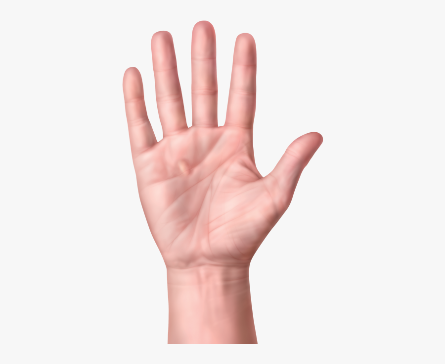 One Hand With Nodules Or Lump In Palm Of Hand, Transparent Clipart