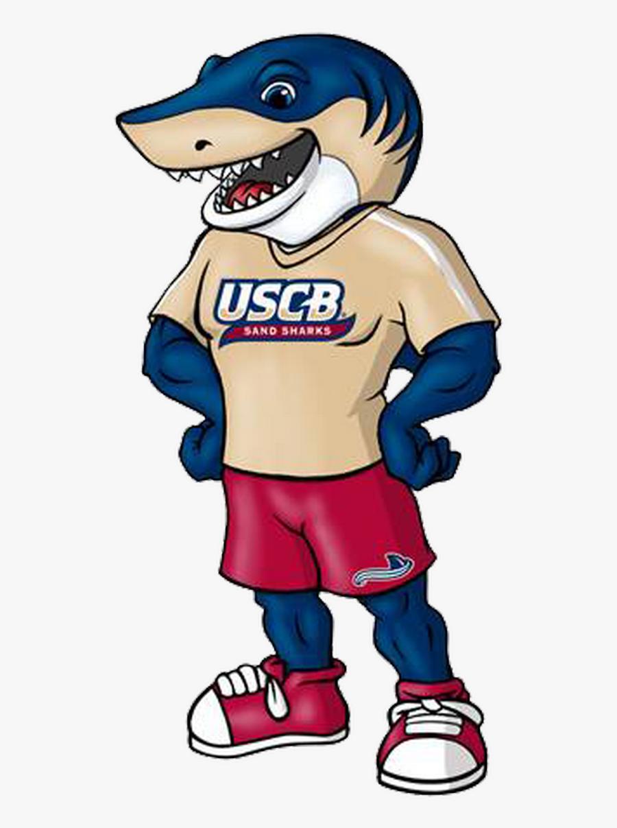 University Of South Carolina Beaufort Clipart , Png - University Of South Carolina Beaufort Mascot, Transparent Clipart